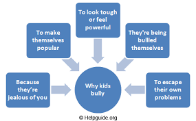bullying reasons